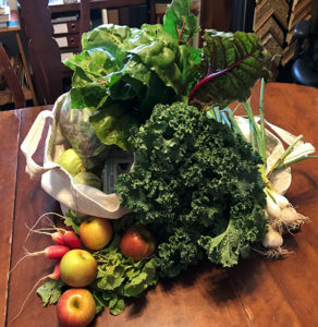 CSA - a weekly small share. Veggies, fruit and eggs.
